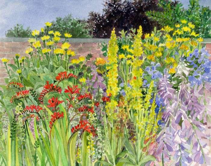 Herbaceous Border Anne Mackinnon