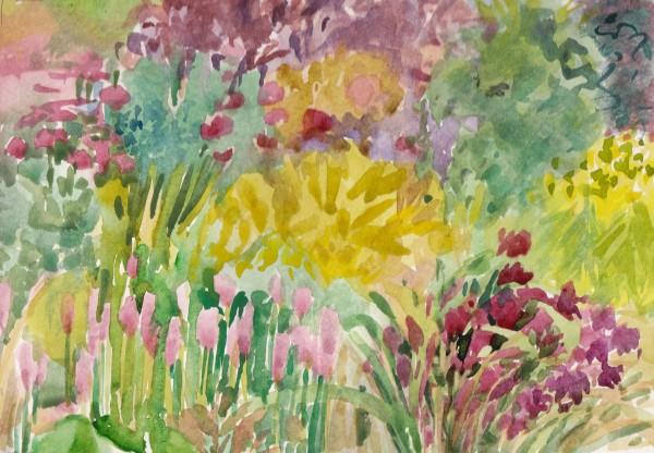 Spring in Fletcher Moss_0001
